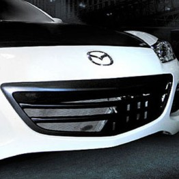 RE-Amemiya Front Grille